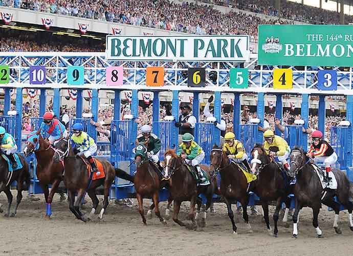 Sportswriting's Favorite Subject: Horses