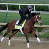 Kentucky Derby 2017: Post Time, Race Schedule, Predictions, Prize Money Info