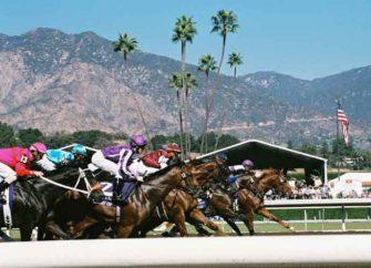 Three Horses Dead In Three Days Following Injuries At Santa Anita Park
