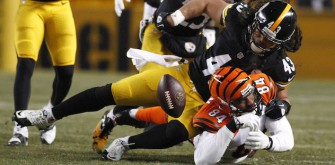 Steelers Likely To Cut Troy Polamalu